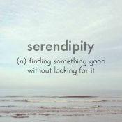 Over Serendipity en Samen spelen 2.0